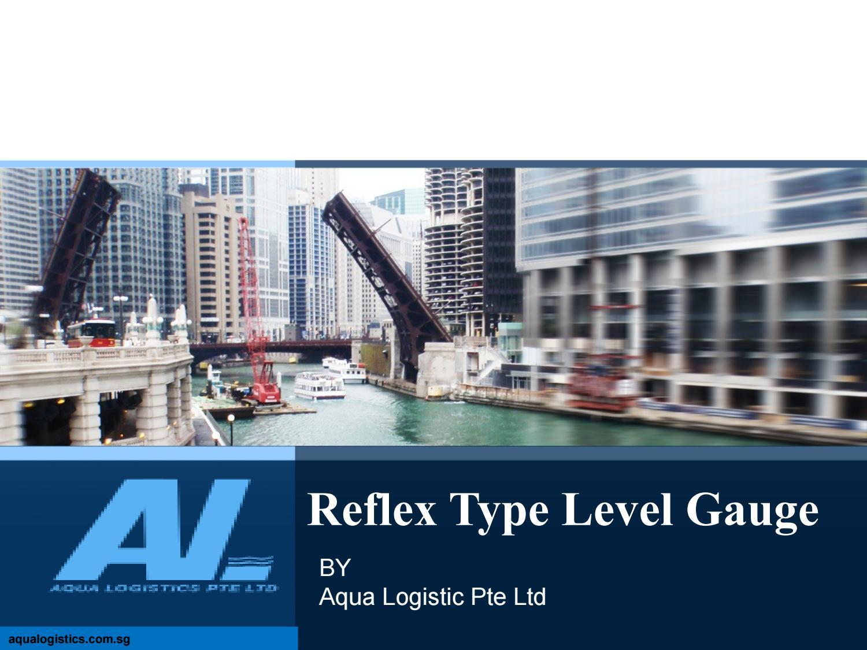 Reflex type level gauge