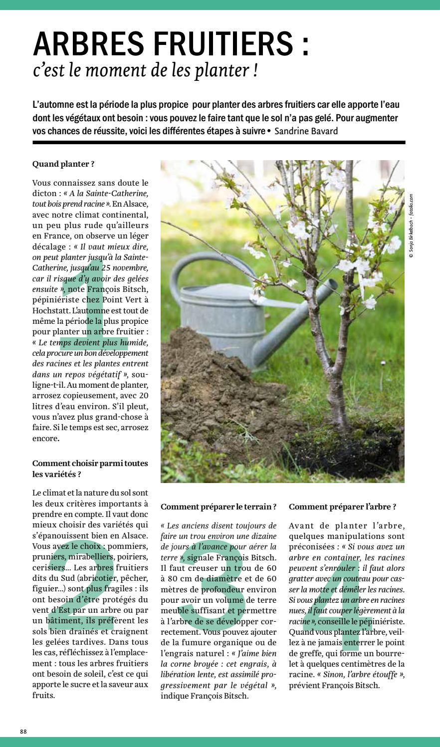 Comment Planter Un Arbre Fruitier spectacles 280 68magazine jds - issuu