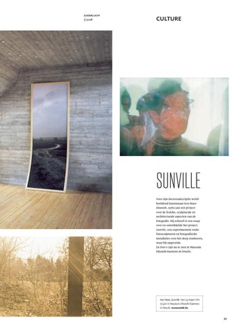 Page 21 of Sunville