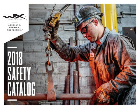 527f370ad9 2018 safety catalog 2 26 by wileyx - issuu