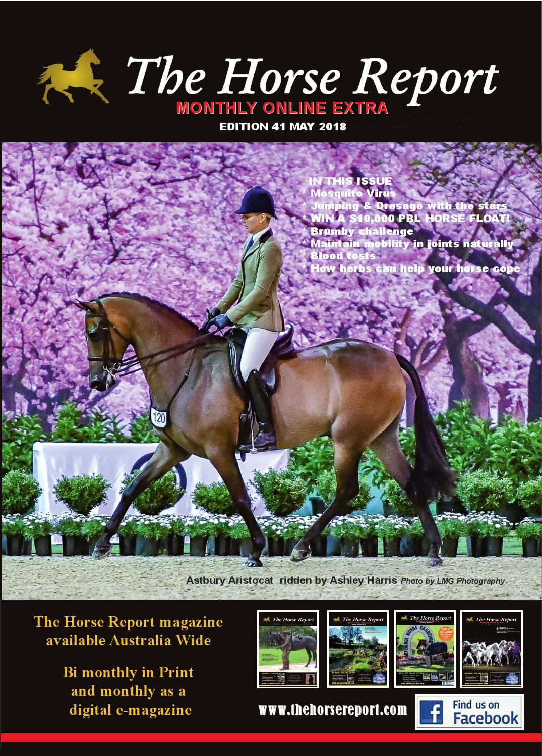 Equestrian Novice 34 Dressage Test For Improving Blood Circulation Other Equestrian