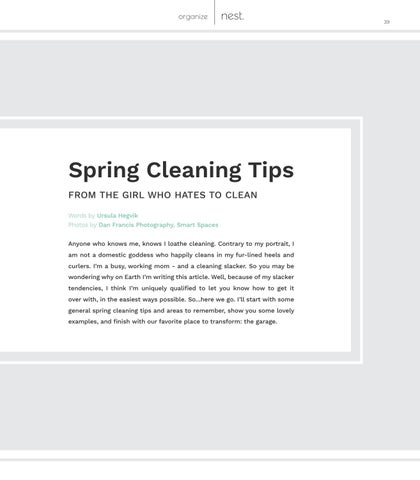 Page 39 of Spring Cleaning Tips  [from the girl who hates to clean]