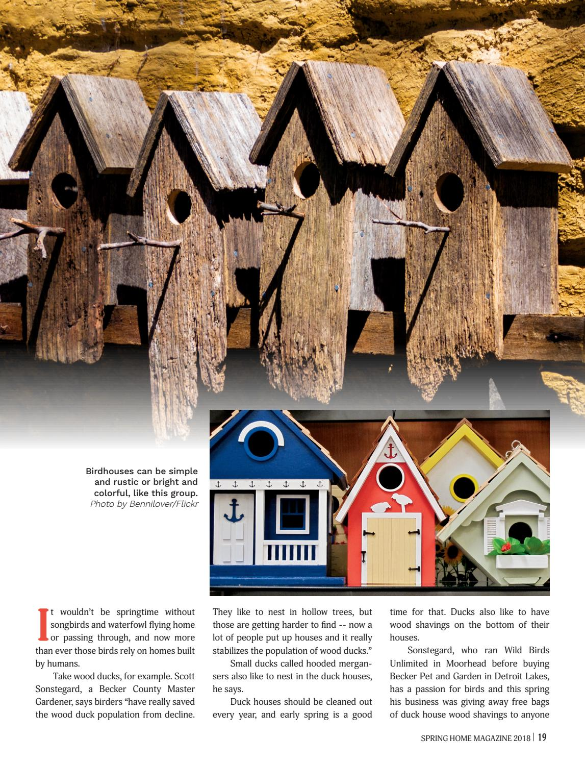Spring Home by Detroit Lakes Newspapers   issuu