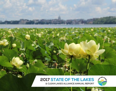 Stats Suggest Lake Mendota Will Remain >> 2017 State Of The Lakes Annual Report By Clean Lakes Alliance Issuu