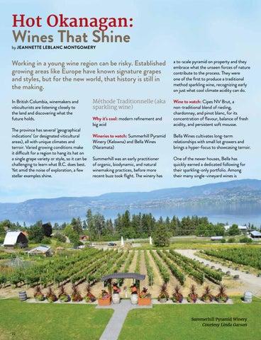 Page 22 of Hot Okanagan: Wines That Shine
