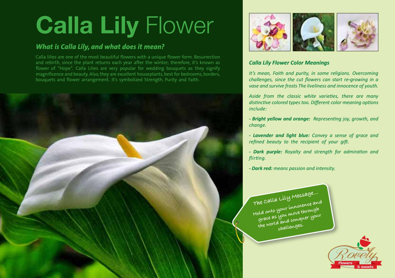 Callalily By Rovely Flowers Issuu