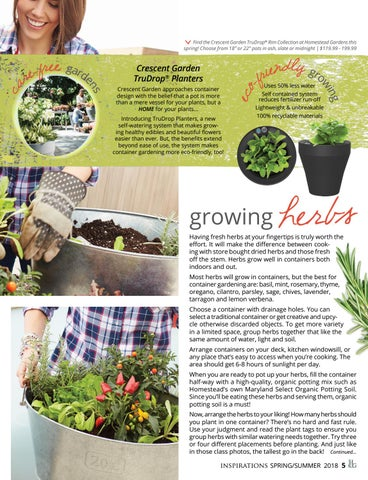 Page 7 of Grow Anywhere: Container Gardening 101