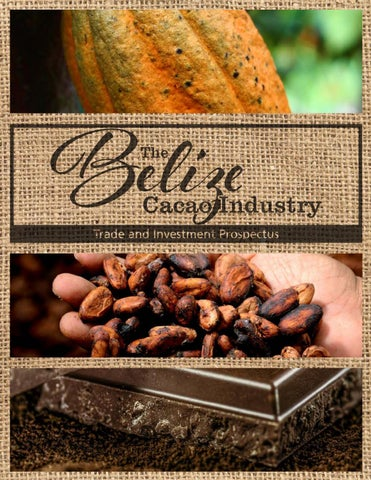 Belize Cacao Industry Trade and Investment Prospectus by Beltraide