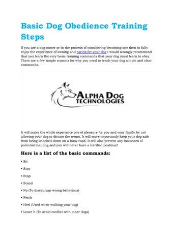 Basic dog obedience training steps by Rafael Vester - issuu