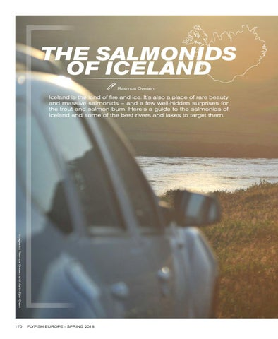 Page 172 of The Salmonids of Iceland