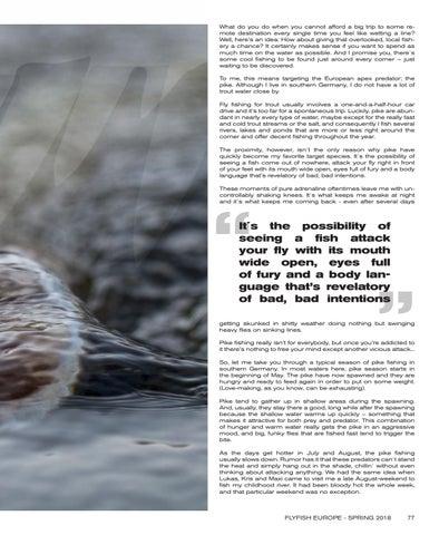 FFE 2018 Magazine by Flyfish Europe - issuu