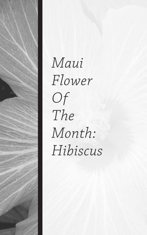 Page 56 of Maui Flower Of the Month: Hibiscus