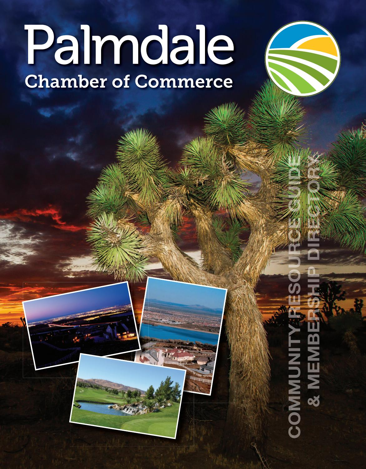 Palmdale Ca 2018 Community Profile By Town Square Publications