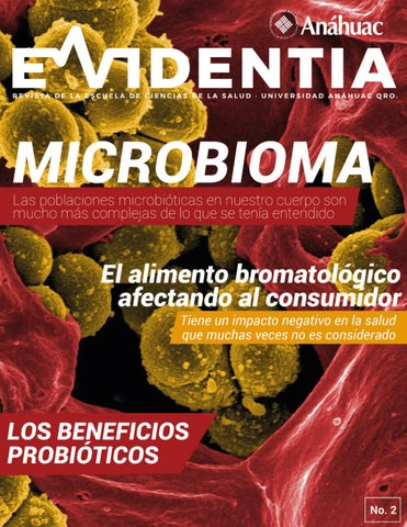 plexo delgado microbioma activador y control del hambre