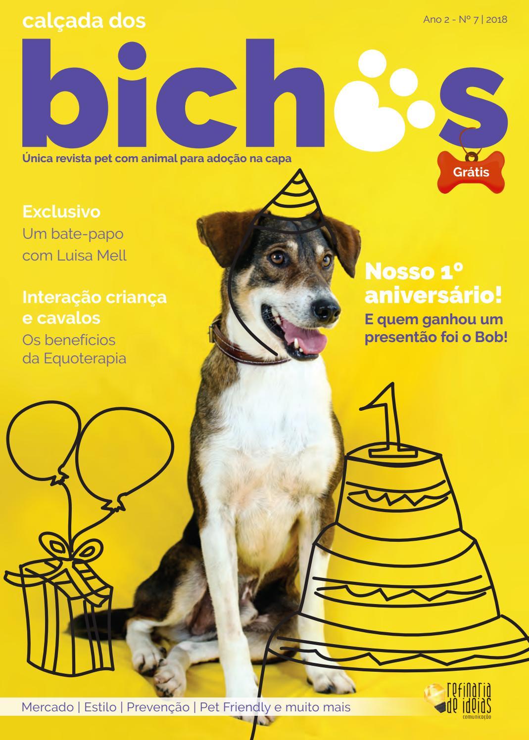 57e81643e Revista Calçada dos Bichos   Edição nº 7 by Refinaria de Ideias Comunicação  - issuu