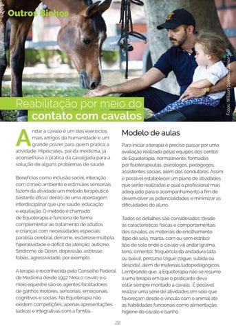 9fb9d8fb2 Revista Calçada dos Bichos   Edição nº 7 by Refinaria de Ideias ...