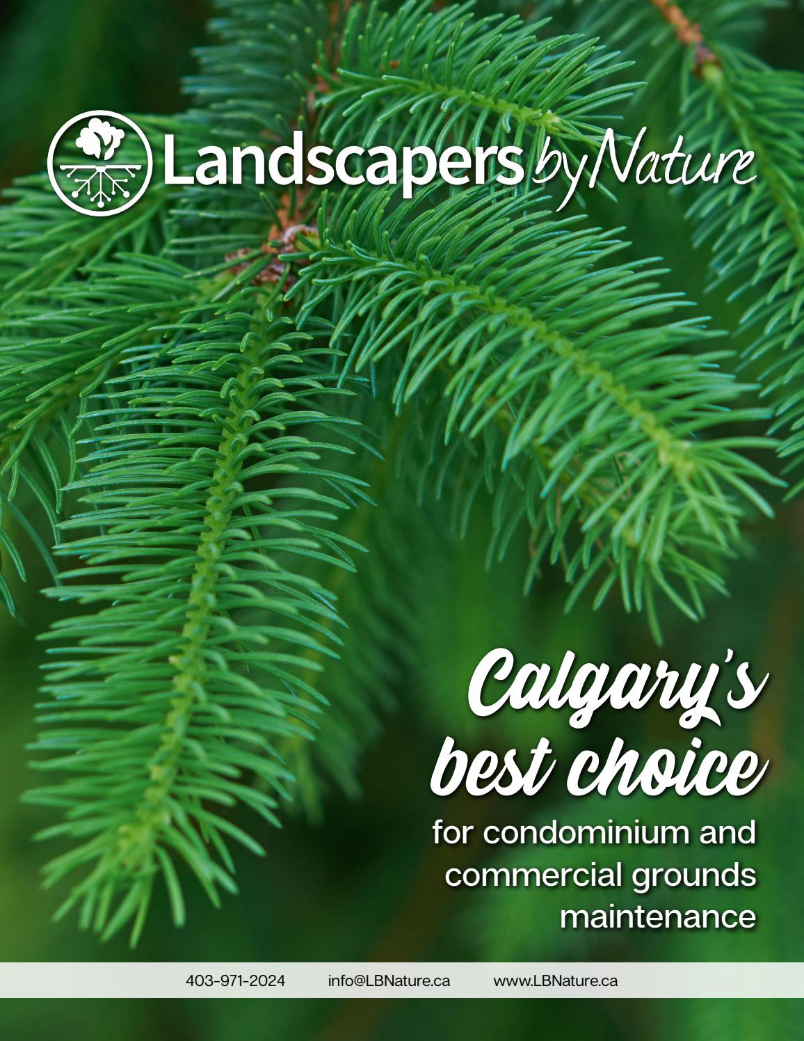 Landscapers By Nature Magazine By Landscapers By Nature Issuu