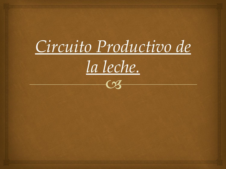 Circuito Productivo De La Leche : Circuito productivo de la leche