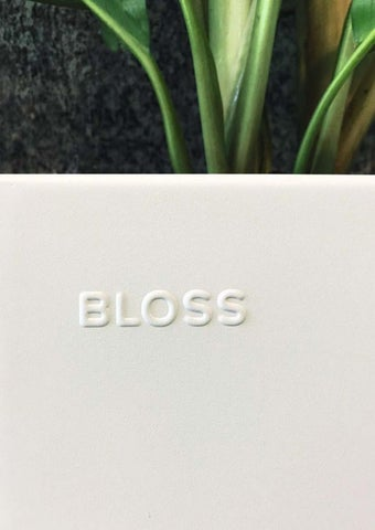 Page 9 of BLOSS - a true trademark on stainless steel