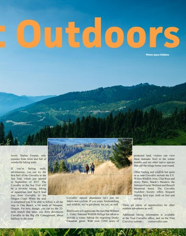 Page 23 of The Great Outdoors