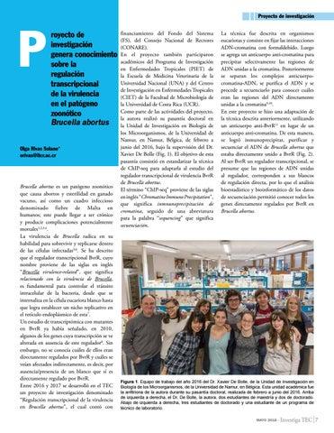 Page 7 of Proyecto de investigación genera conocimiento sobre la regulación transcripcional de la virulencia en el patógeno zoonótico Brucella abortus
