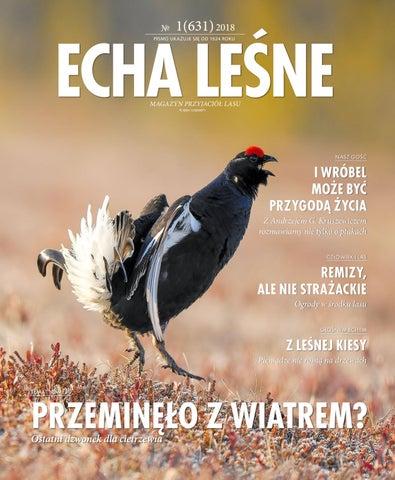 Echa Leśne 1 2018 By Polish Creative Group Issuu