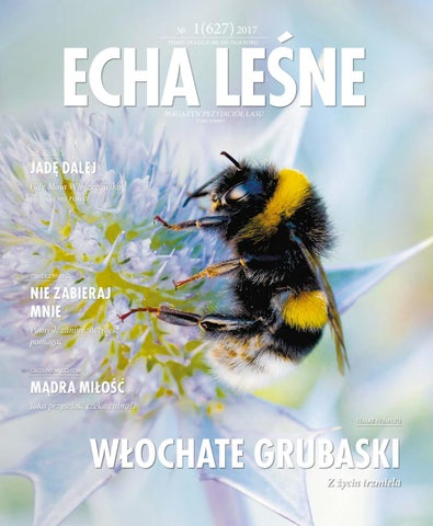 Echa Leśne 1 2017 By Polish Creative Group Issuu