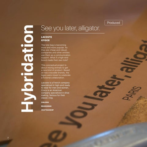 Page 14 of Hybridation