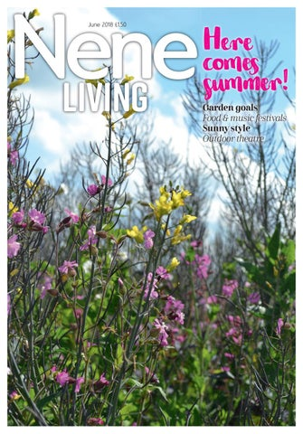 ebb7fae2805 Nene Living June 2018 by Best Local Living - issuu