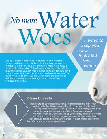 Page 22 of No More Water Woes