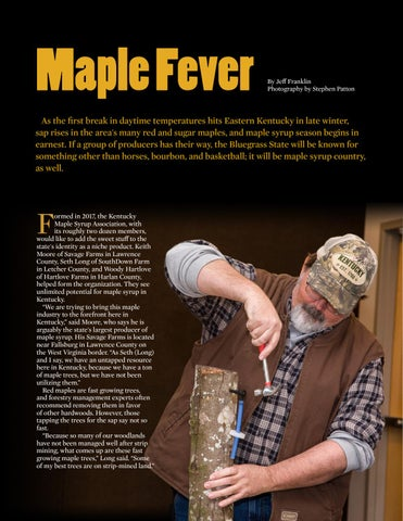 Page 10 of Maple Fever