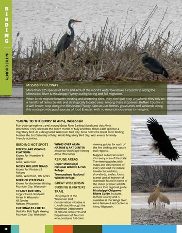 Page 12 of BIRDING & THE MISSISSIPPI FLYWAY