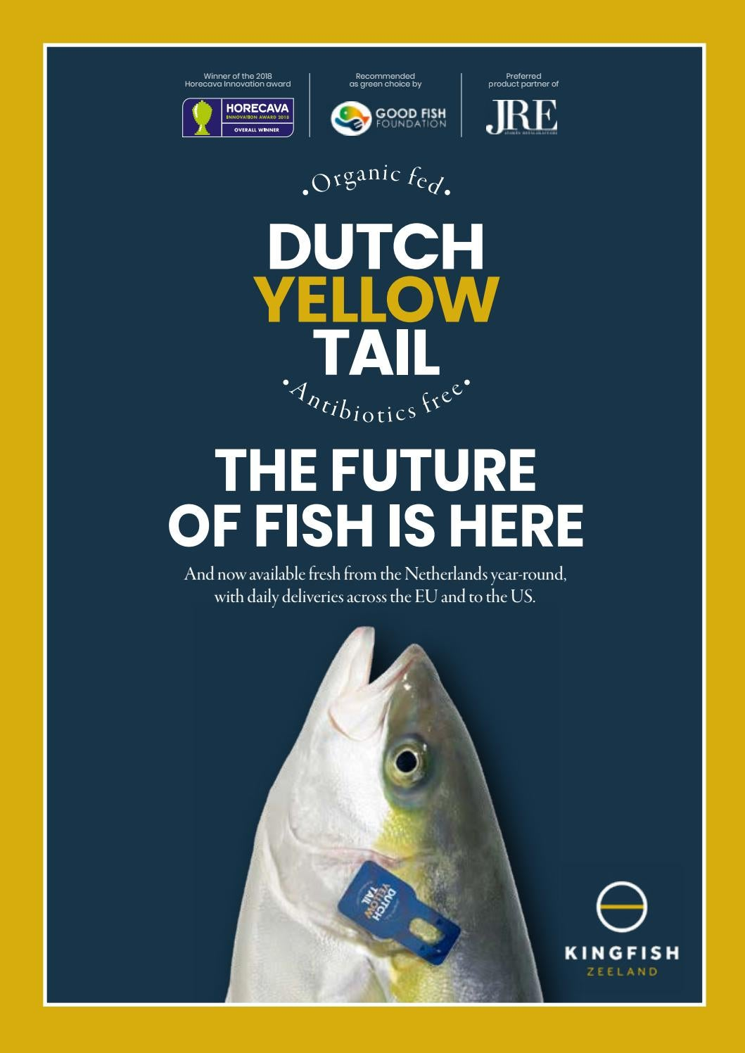 Dutch Yellow Tail The Future Of Fish Is Here By Kingfish Zeeland Issuu