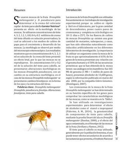 Consciencia 5 By Publicaciones Cch Plantel Naucalpan Issuu