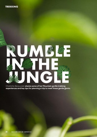 Page 32 of Trekking: Rumble In The Jungle