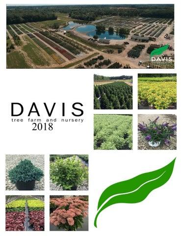 2018 Davis Tree Farm Picture Catalog By Davistreefarm Issuu