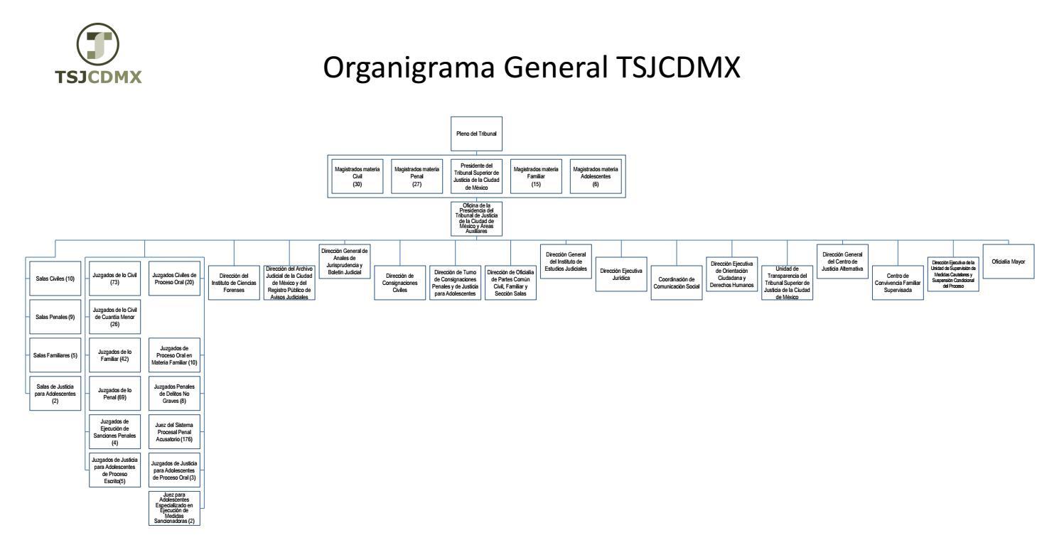 Organigrama Tsjcdmx By Tsjcdmx9 Issuu