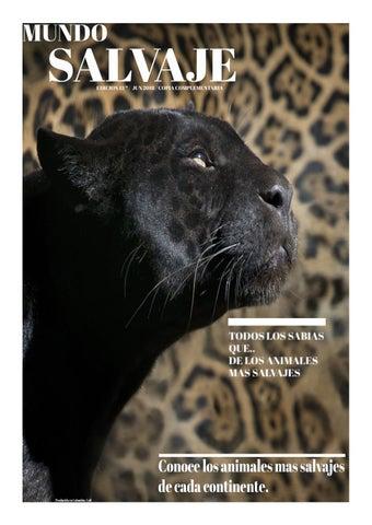 Hiena manchada reproduccion asexual de las plantas