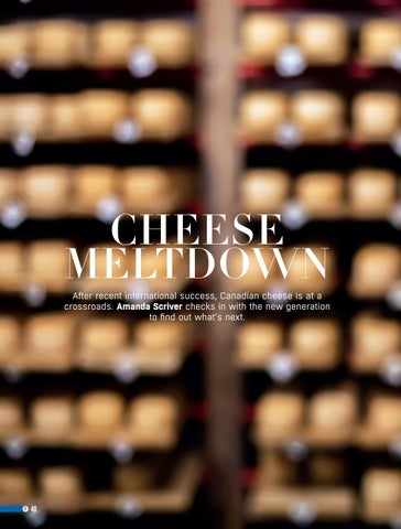 Page 48 of Cheese Meltdown