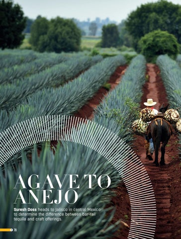 Page 70 of Agave to Anejo