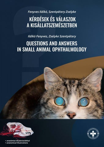 kérdés a szemésznek