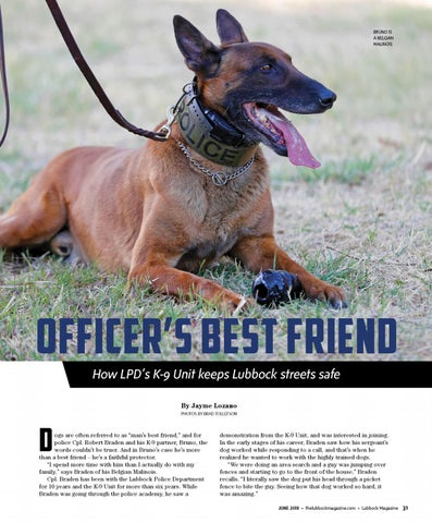 Page 33 of Officer's Best Friend