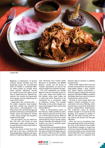 Page 41 of Yucatan Cuisine