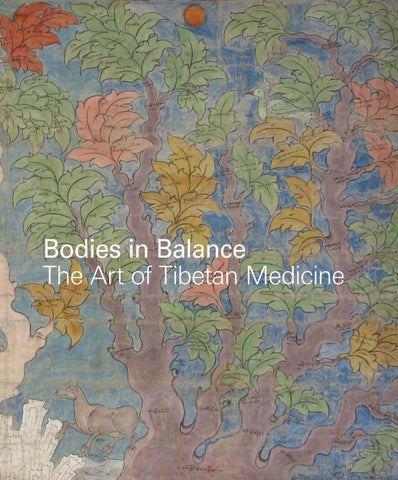 88532e22c6d Bodies in Balance  The Art of Tibetan Medicine by The Rubin Museum ...
