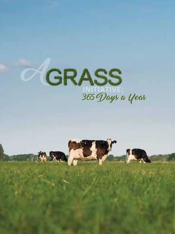 Page 18 of A Grass Initiative 365 Days a Year