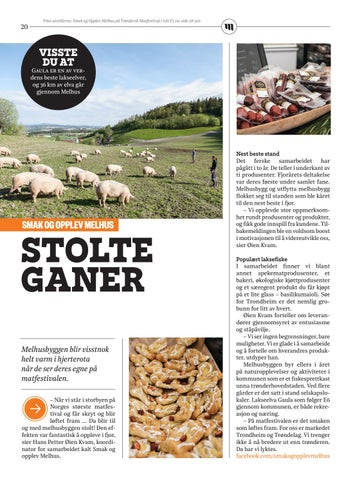 Page 20 of Stolte ganer