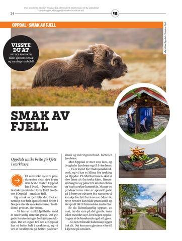 Page 24 of Smak av fjell