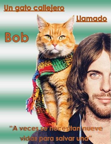 Soy un gato by lola1960 - issuu 6c6e8705588b