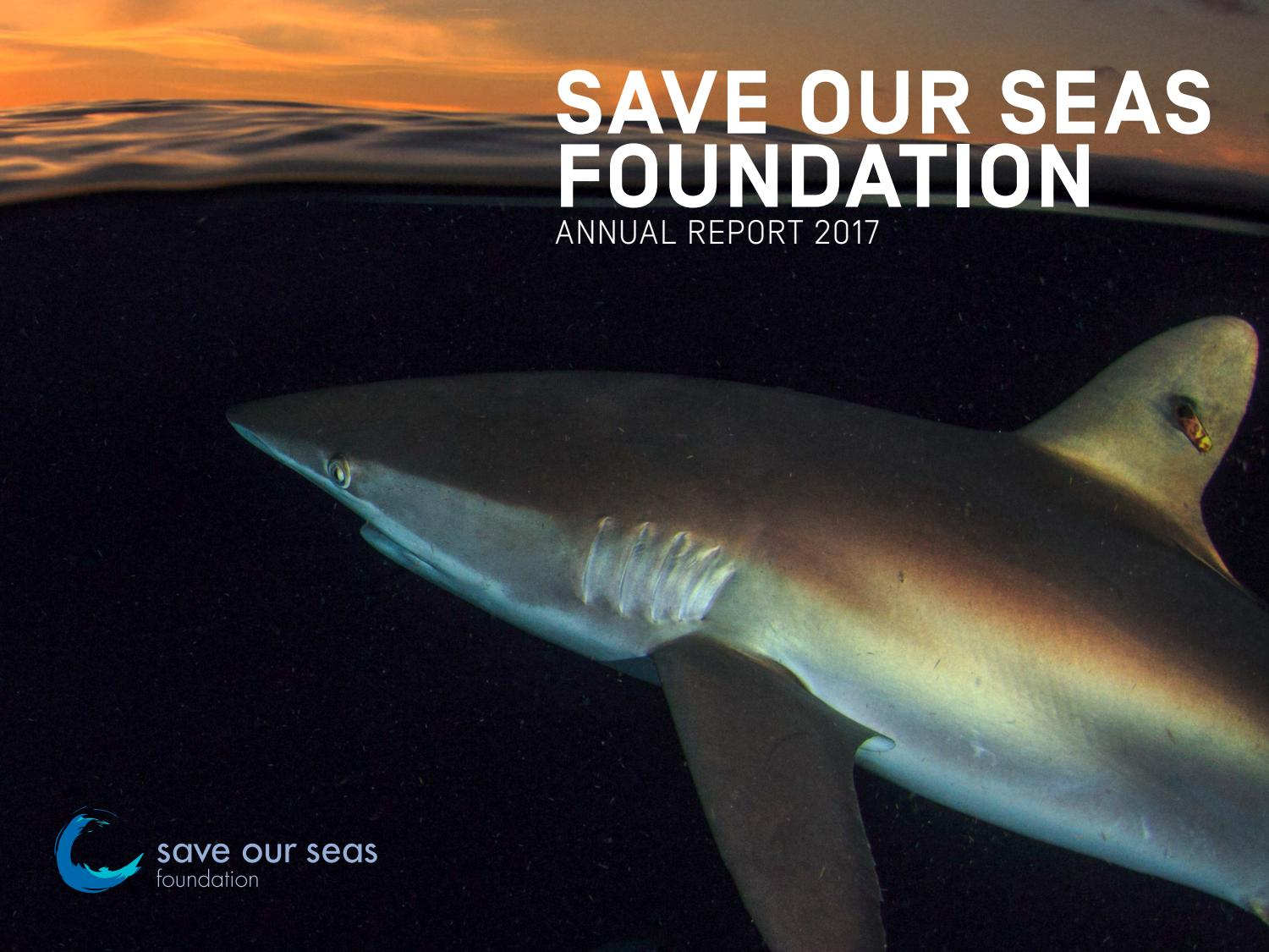 Sosf 2017 Annual Report By Save Our Seas Foundation Issuu Relay Hbridge Motor Controller Francesco Amirante
