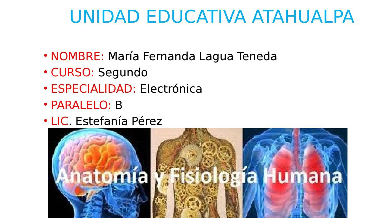 Anatomía y fisiología Humana by Maria Lagua - issuu